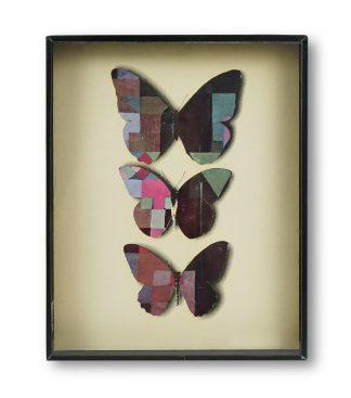 Jiří Kolář (1914-2002), Butterfly showcase, 1970.